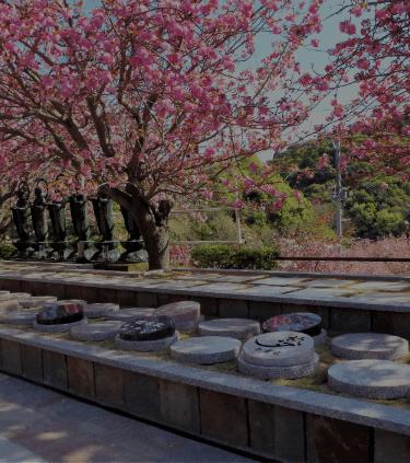 一心寺樹木葬の魅力