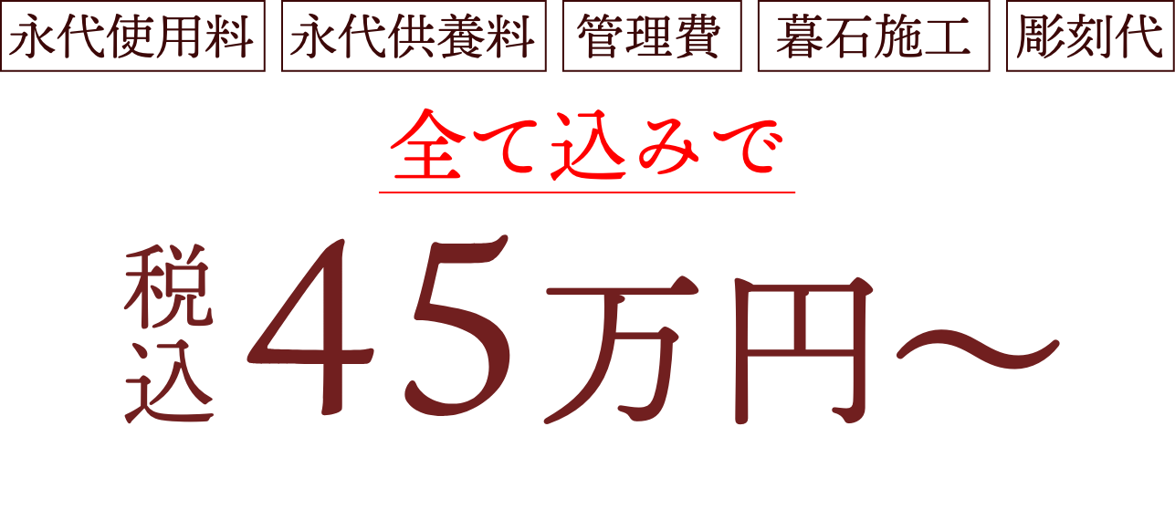 45万円~